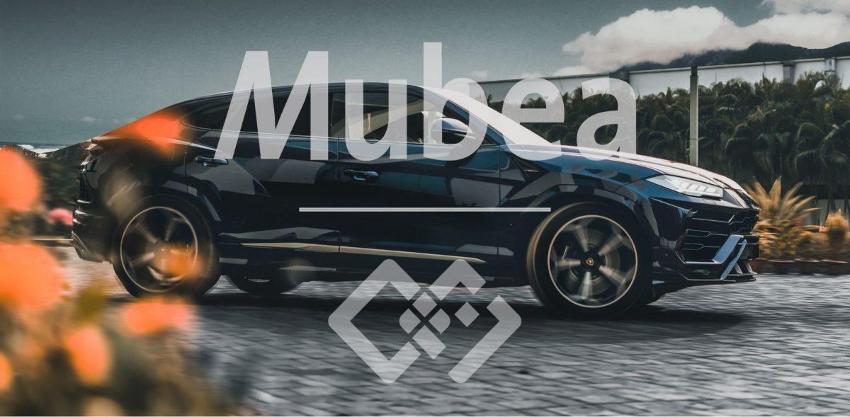 Mubea Case Study Erfolgsgeschichte qmBase Software