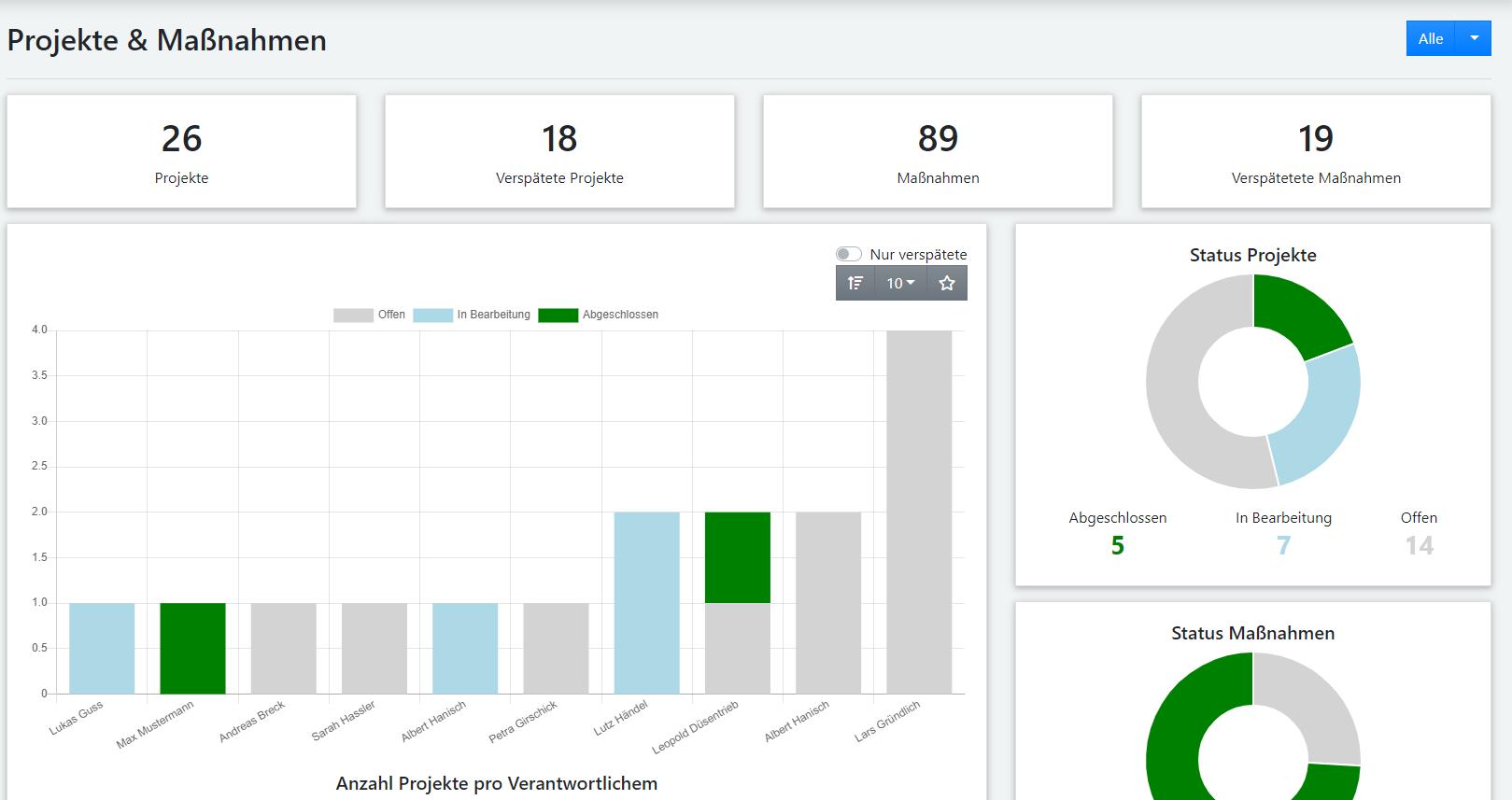 Maßnahmenmanagement Software Darstellung Dashboard